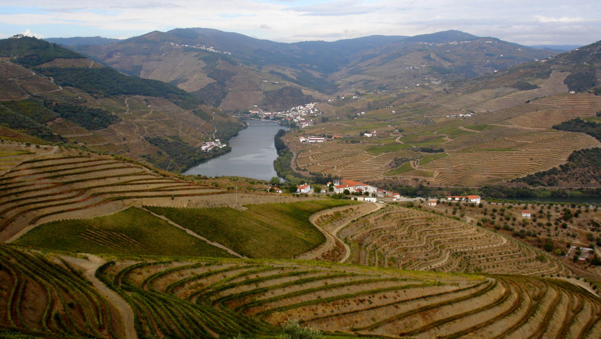 An inspiring visit to Porto and the Douro