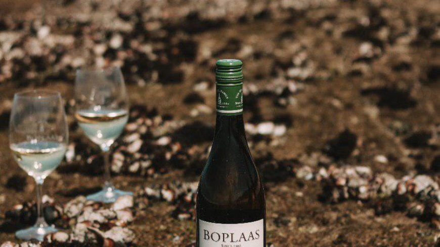 Boplaas wines singled out among Country Life Top 20 in SA